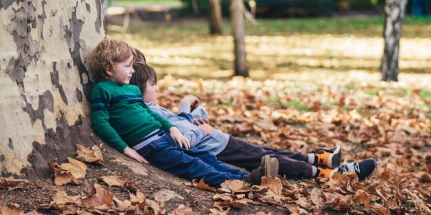 Wszechstronny rozwój dziecka w zgodzie z naturą – 5 głównych zasad edukacji waldorfskiej